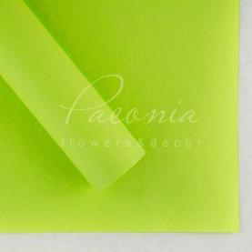 Папір для пакування квітів водостійкий щільний листовий сніжок салатовий 60см * 60см
