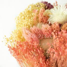 Сухоцвіт квітковий мікс