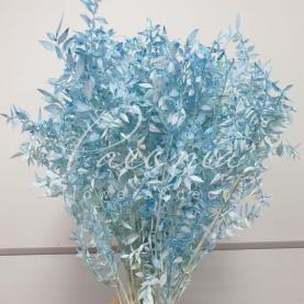 Рускус стабілізований ніжно-блакитний 65см (ціна за 1 пучок)