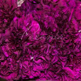 Гвоздика фарбована мікс 65см