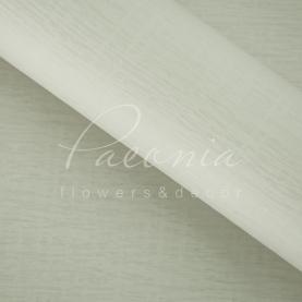Калька Флористична листова 60см*60см матова з тисненням (гуччі)