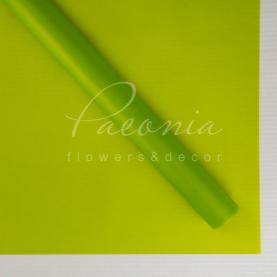 Калька флористична матова напівпрозора листова салатова 60см * 60см