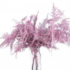 Аспарагус фарбований світло-рожевий 45см (ціна за 1 пучок)