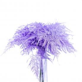 Аспарагус фарбований світло-фіолетовий 45см (ціна за 1 пучок)