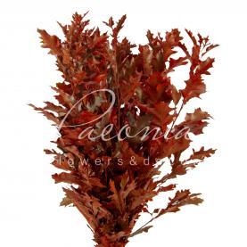 Листя дуба фарбовані червоні 80см (ціна за 1 пучок)