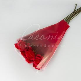 Пакет Флористичний для букета 52см*35*10см usual червоний