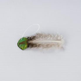 Перо павича декоративне натуральне 3-7 см