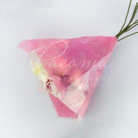 Плівка Флористична для букетов 48*98см рожевий