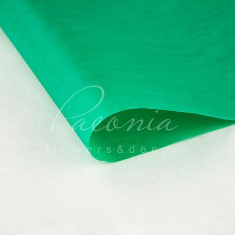 Бумага Тишью в листах 50см*70см зеленая Польша 1 лист