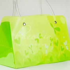 Сумочка Флористична із пластику 22*11*13см зелений