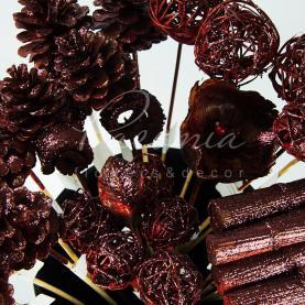 Сухоцвіт мікс висота 50см шоколадний з блиском